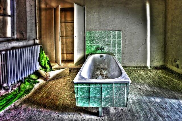 jak się pozbyć rybików z łazienki własnego domu