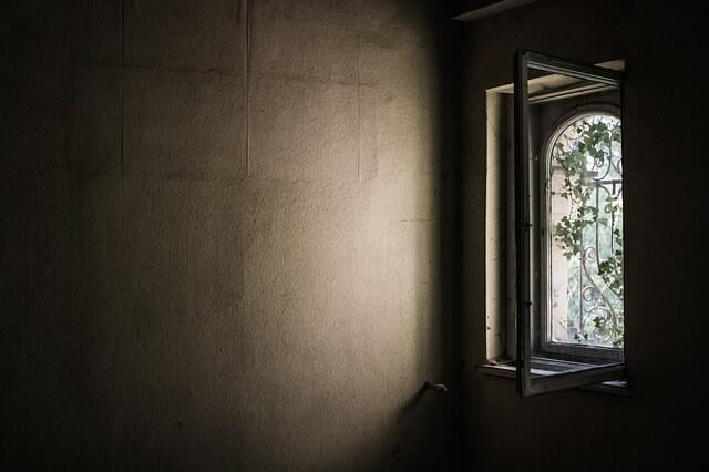 Jak pozbyć się grzyba i pleśni ze ścian i sufitów?