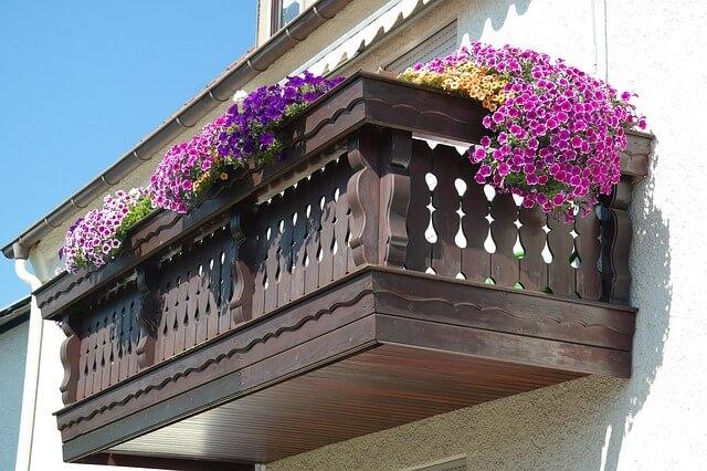 Kolorowy ogród na balkonie – jakie kwiaty na balkon wybrać?